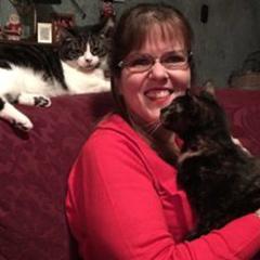 cat behavior expert Linda Hall