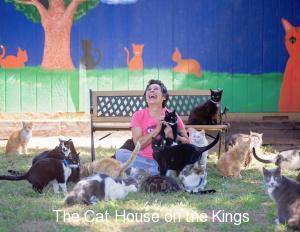 cat house on the kings